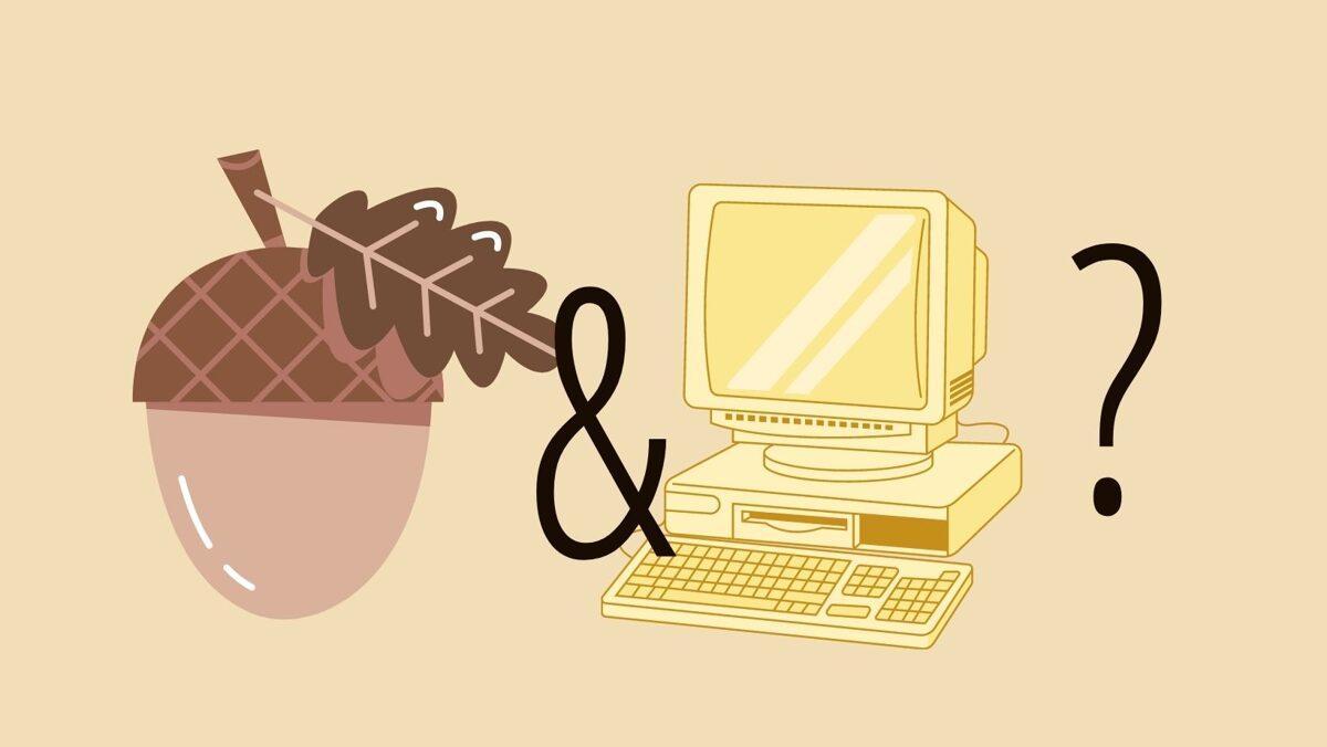 Koda želod v računalništvu